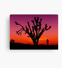 Sunset Over Mojave National Preserve Canvas Print
