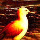 Blue Gull - Digital change by EdsMum