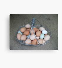 Eggs , Eggs , Eggs Canvas Print