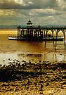 The Waverley at Clevedon Pier, Somerset, UK by David Carton