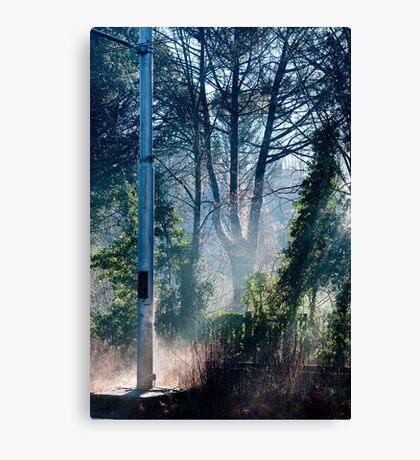 Morning at the Station take one Canvas Print