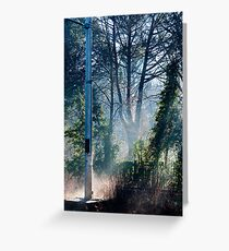 Morning at the Station take one Greeting Card