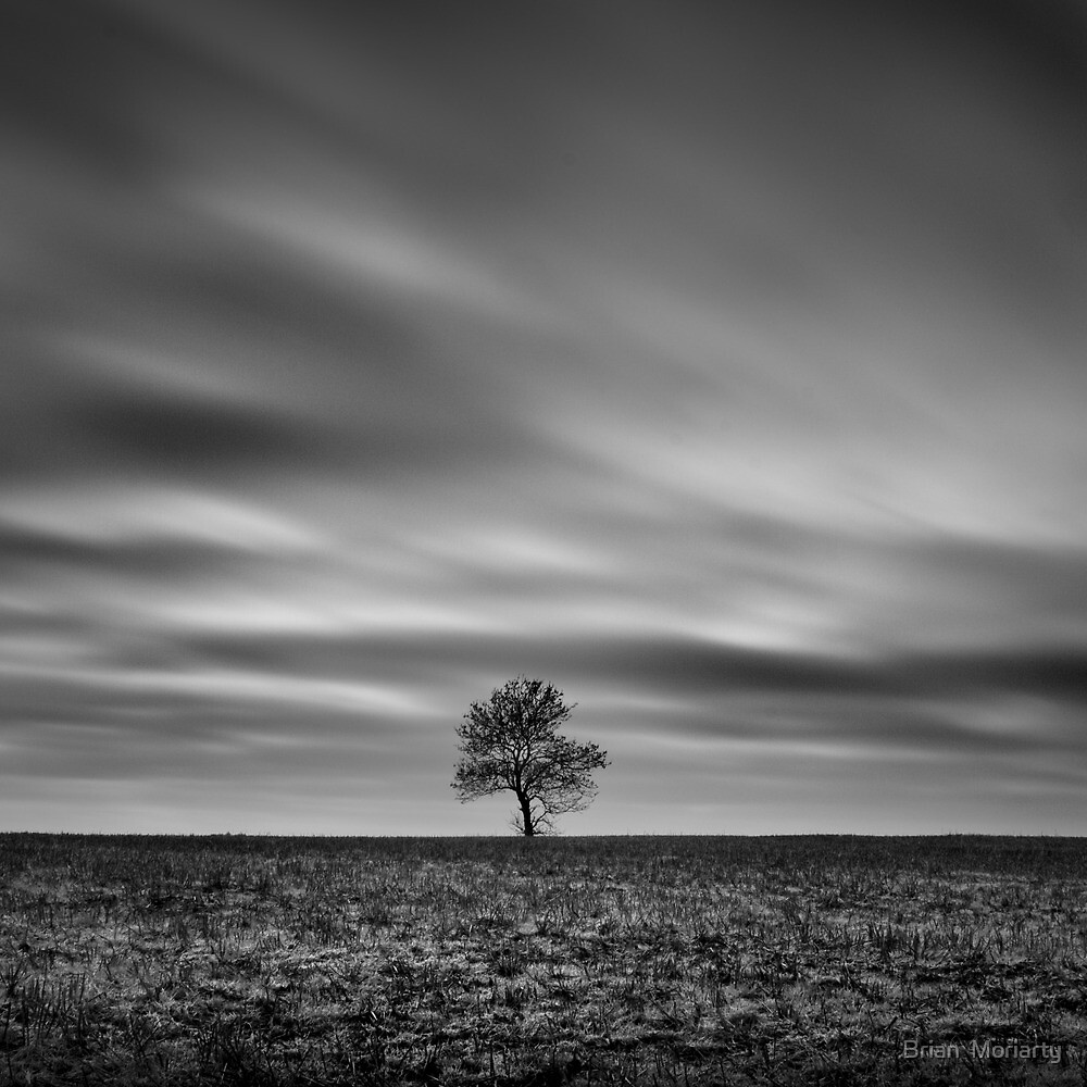 Grey World by Brian  Moriarty