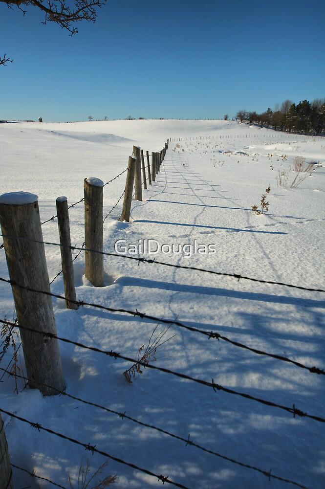 Fenced In by GailDouglas