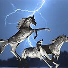 Lightning At Horse World BW Color Print by Bo Insogna