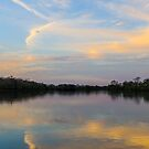 Sunrise on the Cuiaba River by Linda Sparks