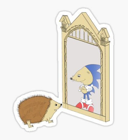 Hedgehog sees Sonic in Mirror of Erised (Harry Potter) Sticker