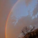Rainbow in my backyard by elisab