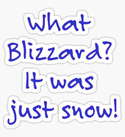 What Blizzard??? Sticker