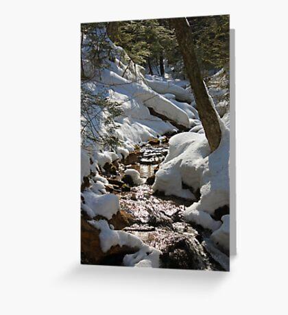 A little creek near Wagner Falls Greeting Card