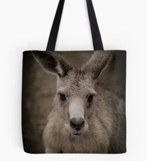 Tasmanian (or rufous bellied) pademelon Tote Bag