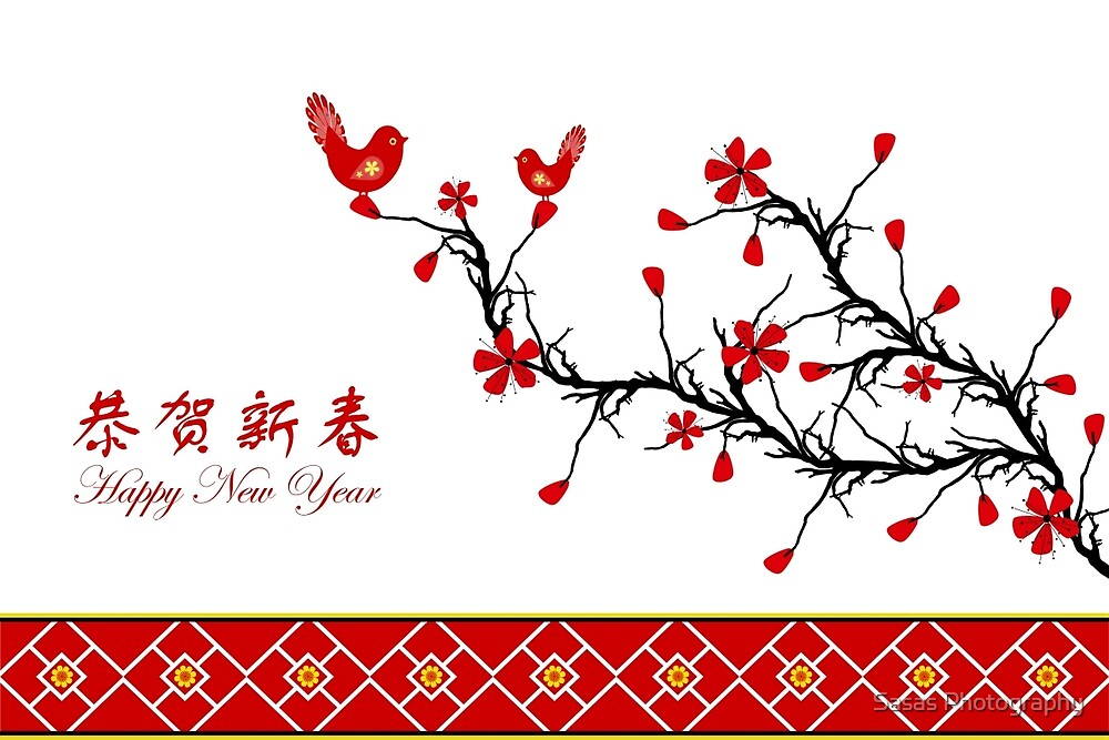 Chinese New Year by IB Photography