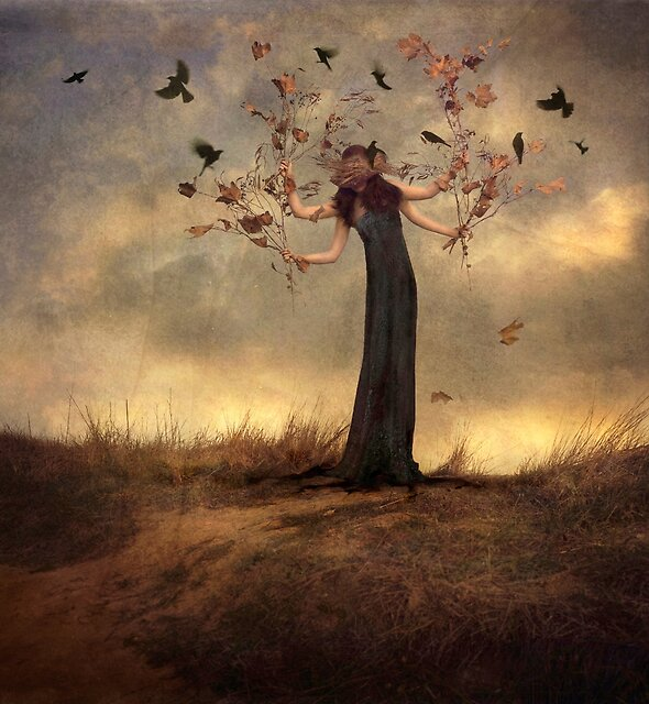 Beautiful Chaos by Trini Schultz