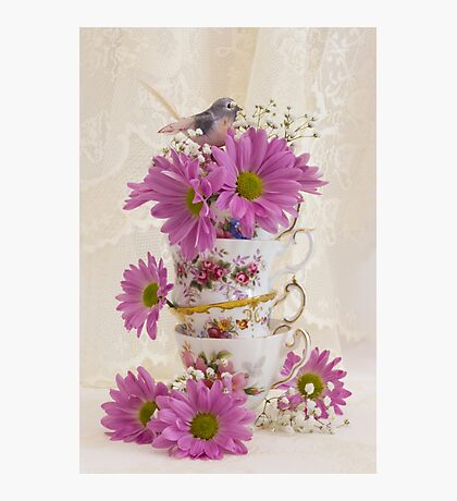 Tea Cups And Daisies  Photographic Print