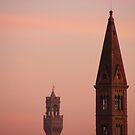Pink Skies In Florence by minikin