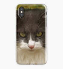A Serious Look iPhone Case/Skin