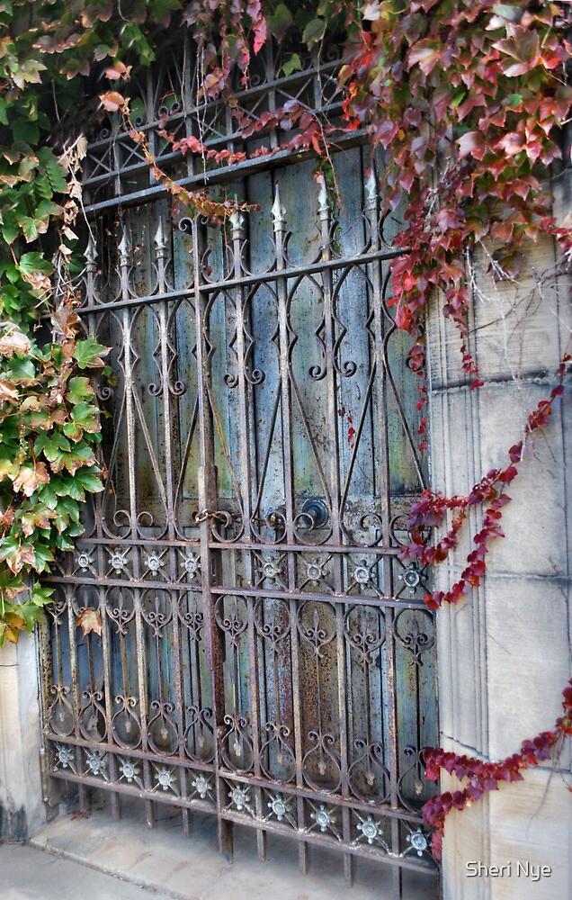 Old Mausoleum Door by Sheri Nye