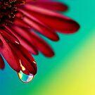 Shiny Happy Feelings by BobbiFox