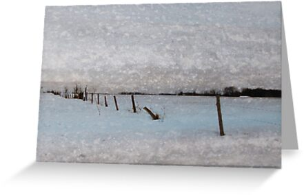 A Winter's Day by enchantedImages