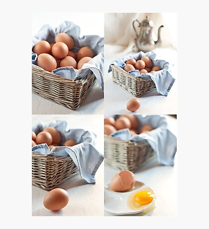Variations on eggs Photographic Print