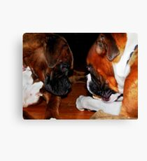 Face-Off Canvas Print