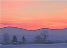 Snowy Sunset Silhouette   by Betty  Town Duncan