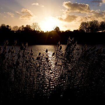 Sunset and lake by MathieuLongvert