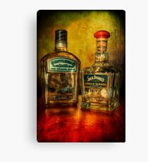 Old Friends Canvas Print
