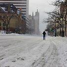 Winter Wasteland by Lita Medinger