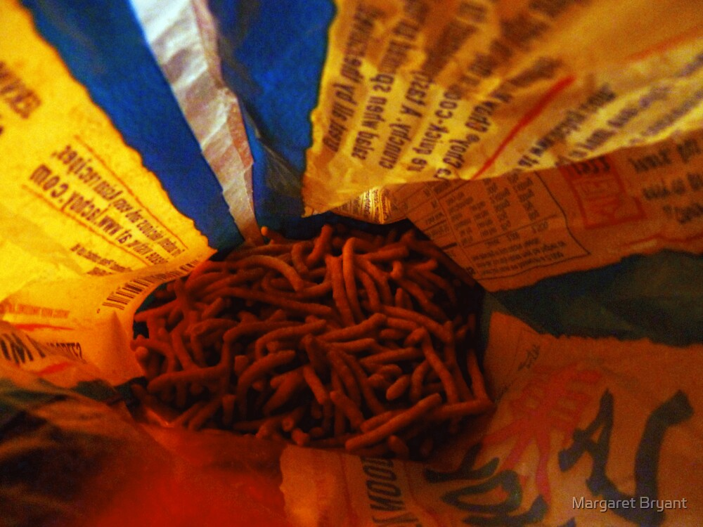 02-03-11  Noodles-Eye-View by Margaret Bryant