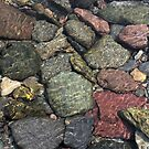 Montana Riverbed 2 by Robert Goulet