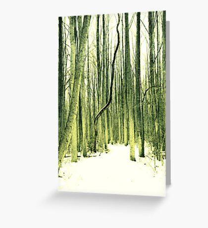 The Path Less Taken Greeting Card