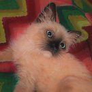 Baby Maxwell by Pam Humbargar