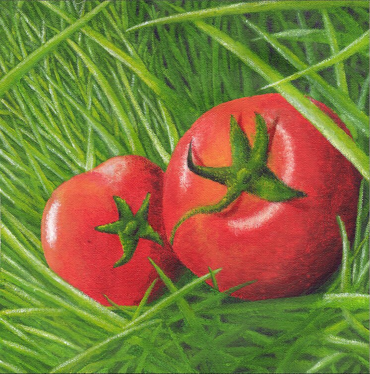 tomatoes by findingmandy