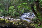 Upper Liffey Falls by mspfoto
