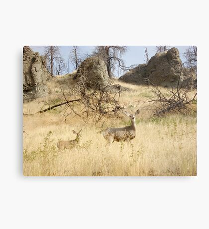 Freeze, Bambi! Metal Print