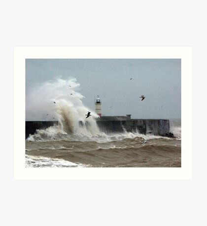 Wave to the Birds Art Print