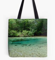 Williford Spring Tote Bag