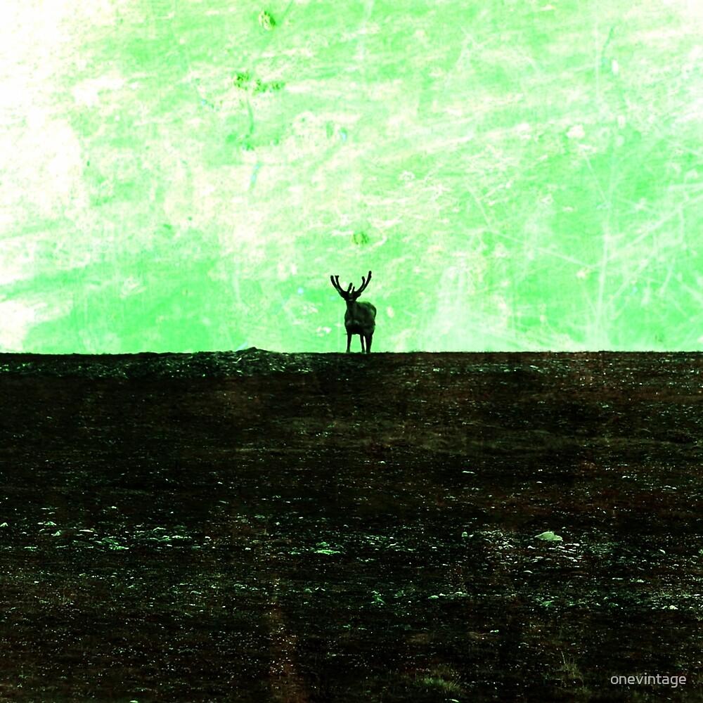 Deer in green by onevintage
