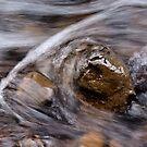River Rock by Lee Potter
