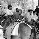 Santorini Story Teller by Martin  Hazelgrave