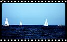 """Boats on the Blue by Christine """"Xine"""" Segalas"""