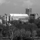 St Albans Cathedral 1 by Paul  Green