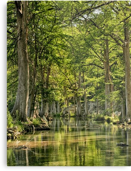 Photographic Art From Texas by Capt. Charles McKelroy