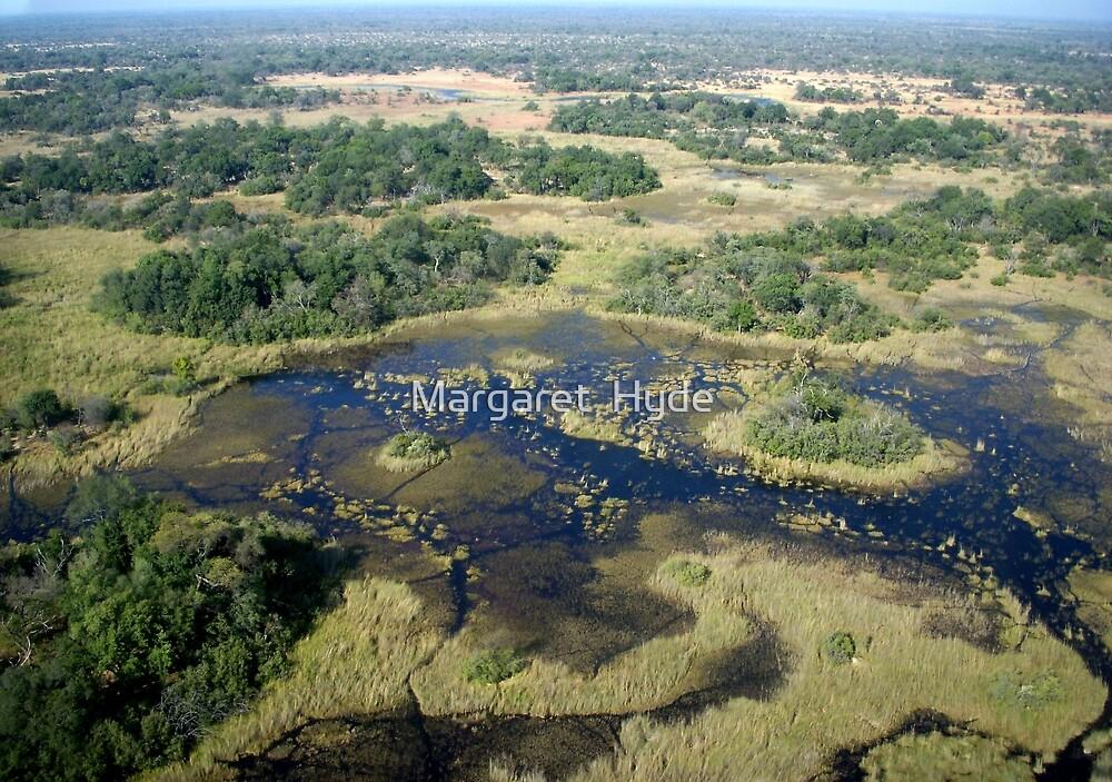 Aerial of Okavango Delta, Botswana (7) by Margaret  Hyde