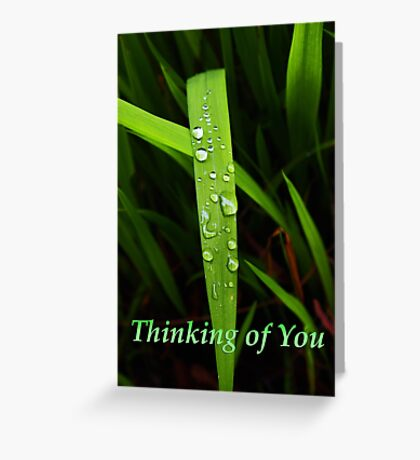 "grass blade ""thinking of you"" card Greeting Card"