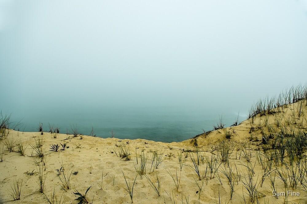 Cape Cod National Sea Shore by Sam Fine