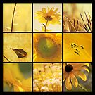 3x3 yellow b by Aimelle
