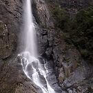 Ellenborough Falls by John Vandeven