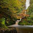 Pystyll Rhaedr Falls by Paul Whittingham